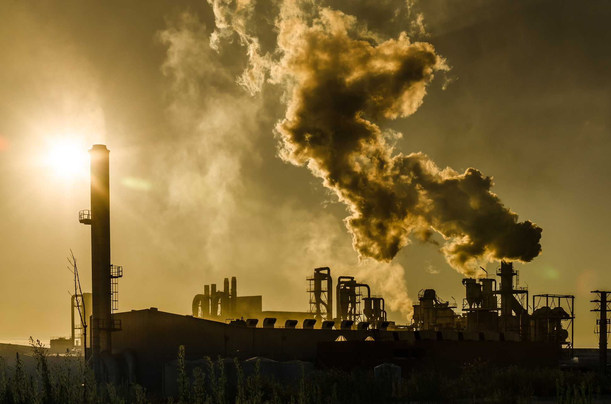 Essay about pollution by factory